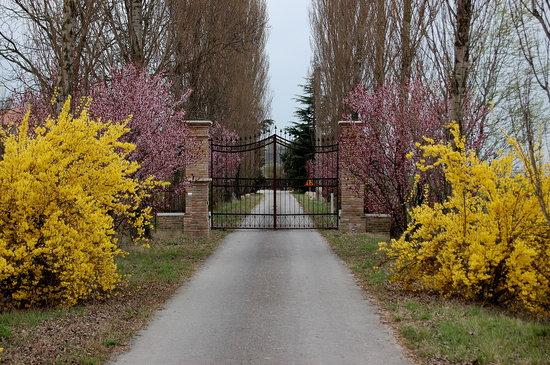 San Giorgio di Mantova, Italy: ingresso Agriturismo Corte Rocca