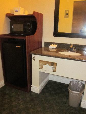Berkeley Rodeway Inn: Sink area