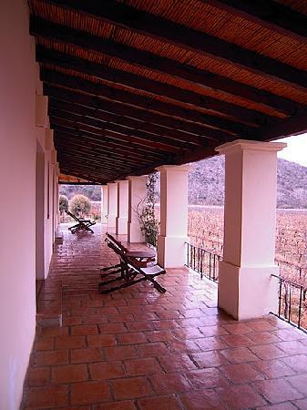 Vinas de Cafayate Wine Resort: Vista desde la habitación