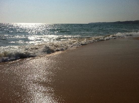 Hotel Paraíso de Albufeira: Praia Da Gale Beach