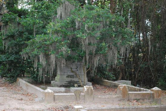 Bonaventure Cemetery: Old Moss