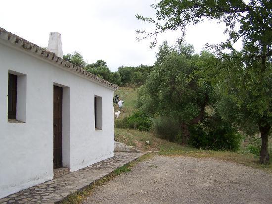 Complejo Turistico Tajo del Aguila: stone houses