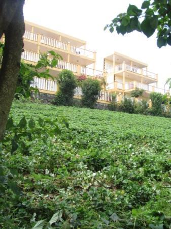 Quinta da Montanha Hotel: View from lower garden