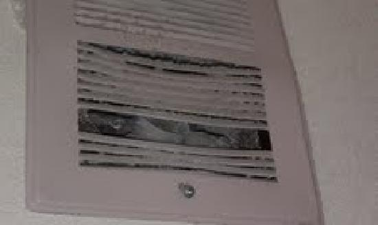Days Inn Willoughby/Cleveland: Nice and clean!  Also there was a mystery bag in the vent...