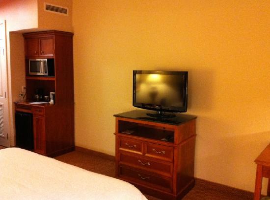 Hilton Garden Inn Syracuse: TV Area