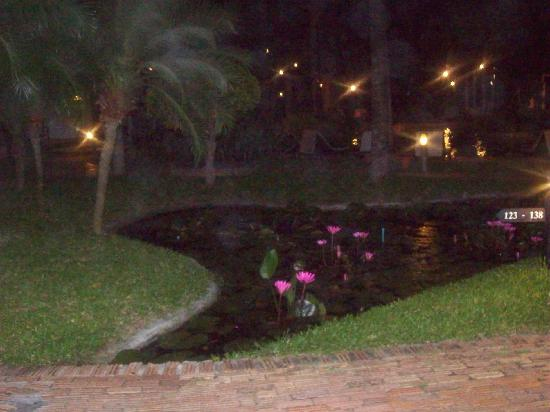 Baan Talay Resort : pond with water lilies
