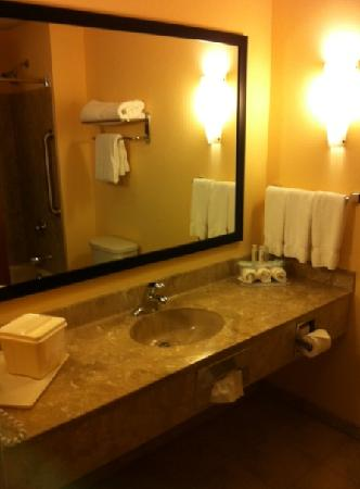 Holiday Inn Express & Suites - Harrisburg West: Bathroom