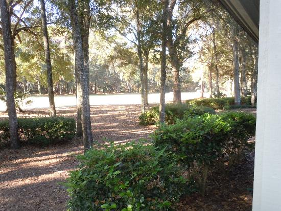 Carolina Club by Spinnaker Resorts: our backyard was a golf course!