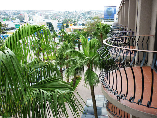 Lucerna Tijuana: palm view of city