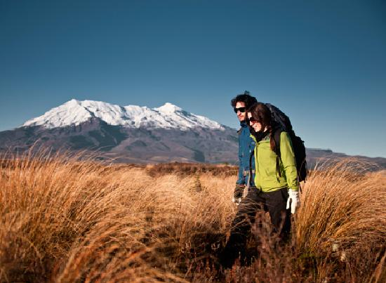 Discovery Lodge: Hiking & Mt Ruapehu