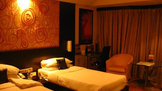 Sahara Star Hotel: The cosy interiors of the Earth Room