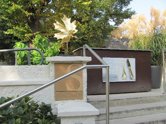 Goldene Spinne: Stierereck is the best Vienna Restaurant (in the Park)