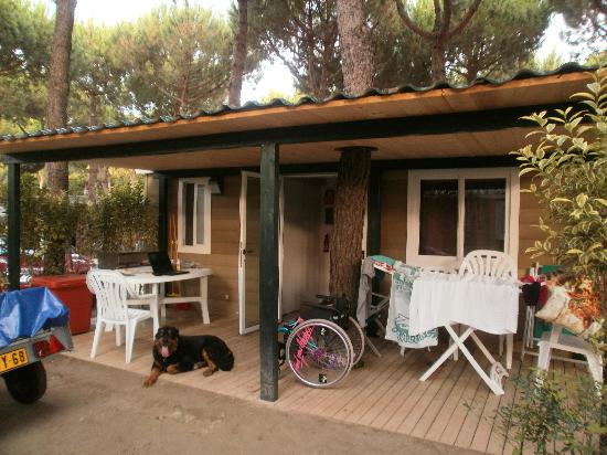 Lido degli Scacchi, Italien: SPACIEUX