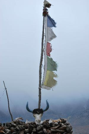 Malla Hotel: Very emotive, prayer flags