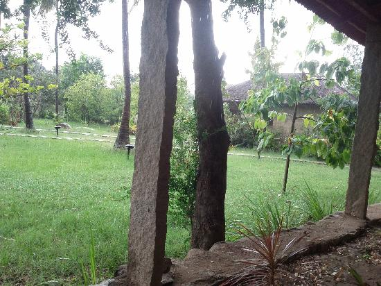 Shama's Cottages : view from my room
