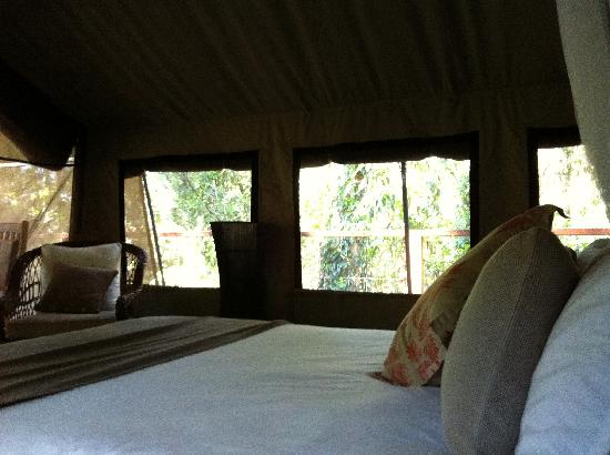 Paperbark Camp: View from the bed