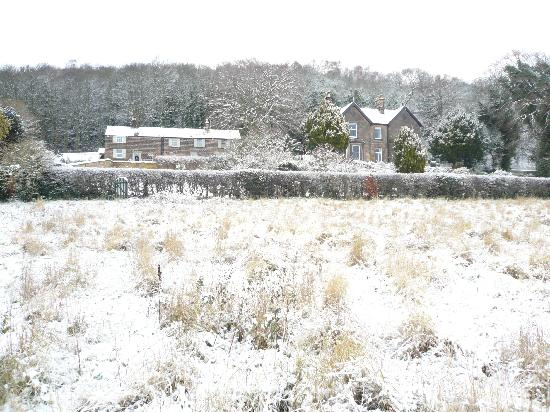 Holmefield Guesthouse & Holiday Cottages: winter wonderland