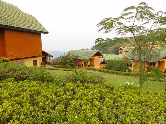 Mae Salong Flower Hills : i bungalows