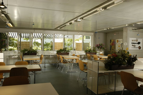 Lausanne Youth Hostel: Speisesaal