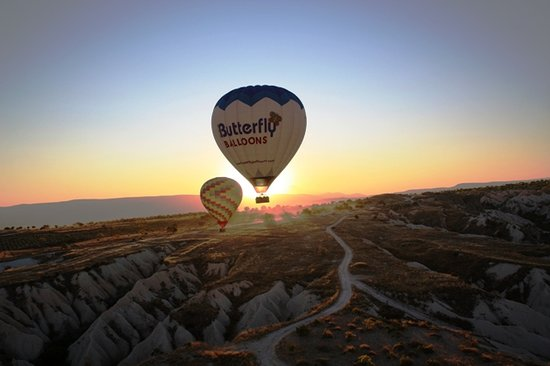 Butterfly Balloons: sunrise