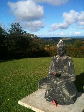 Gaia Retreat & Spa: Serene