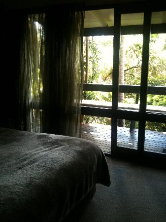 Gaia Retreat & Spa: Looking out of the room