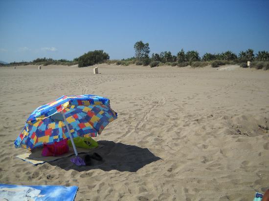 Camping Las Dunas: La spiaggia