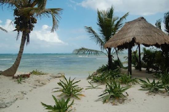 Balamku Inn on the Beach: beach view