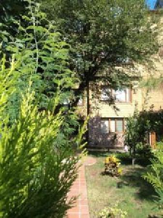 Istanbul Garden Suite : Garden 1