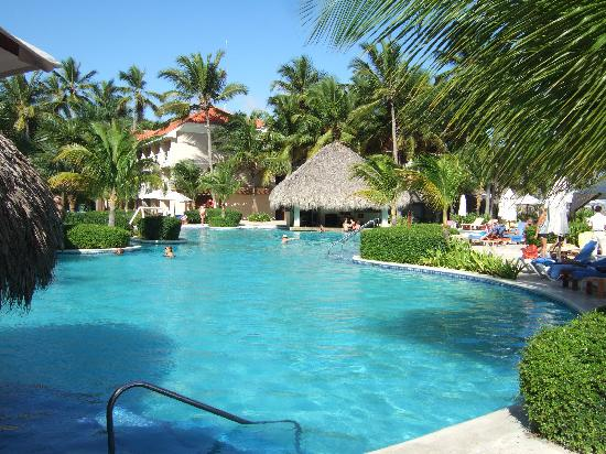Dreams Palm Beach Punta Cana: Pool & pool bar