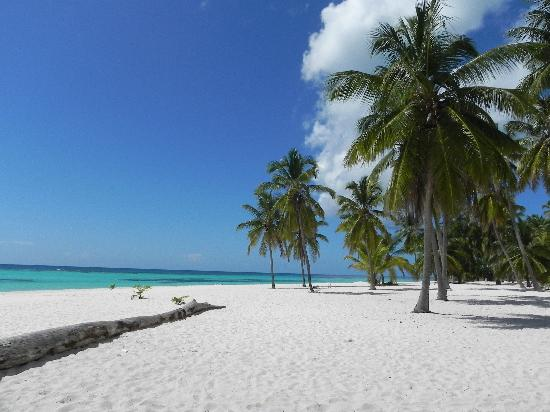 Dreams La Romana Resort & Spa: Saona ,plage du Docteur.....