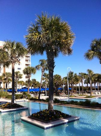 Myrtle Beach Marriott Resort & Spa at Grande Dunes: Pool