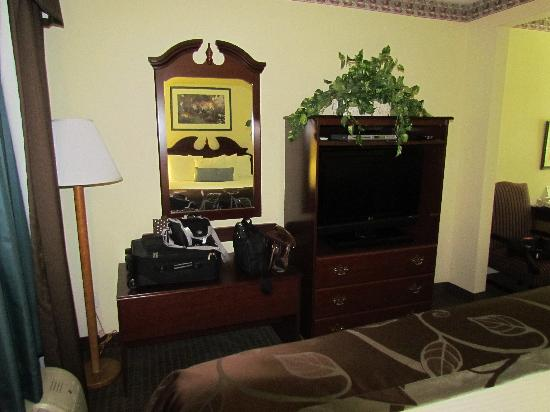 Wingate by Wyndham Indianapolis Northwest: Flat screen TV with blue ray