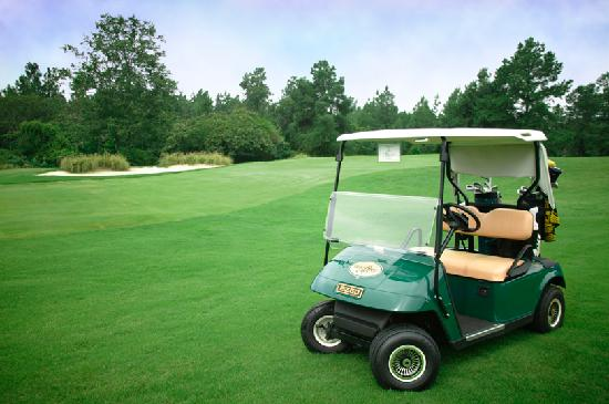 Foxfire Golf and Country Club: Golf Cart