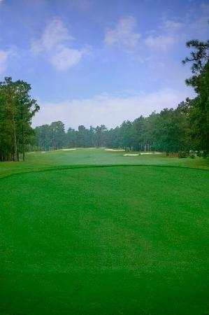 Foxfire Golf and Country Club: Course