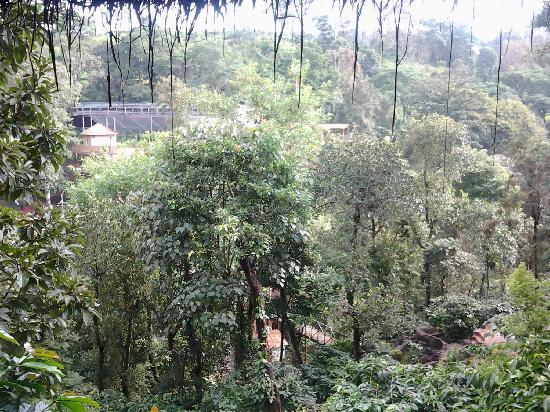 Vythiri Village Resort: Forest View