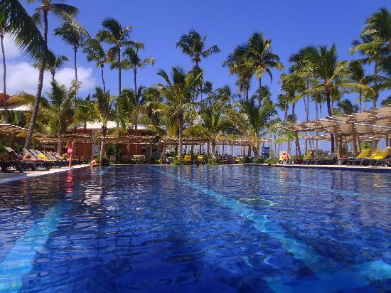Barcelo Bavaro Palace Deluxe : lap pool