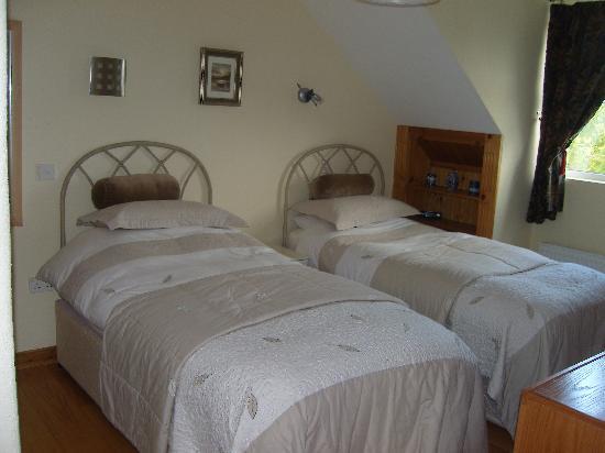 Tullyvrick Bed & Breakfast: Twin Bedroom En-suite
