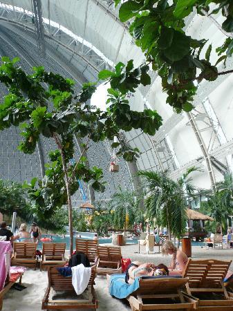 Tropical Islands Resort : Tropical Islands mit Heißluftballon hinter den Bäumen.