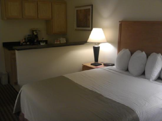 Quality Inn DFW-Airport: Queen room came with kitchenette