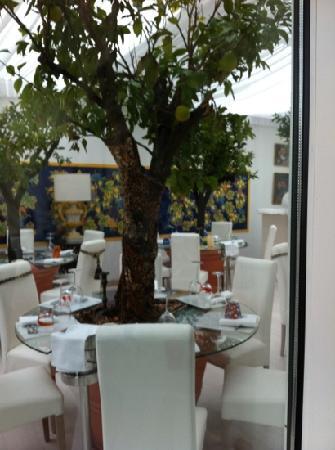 Country House Casino di Caccia: Sala con alberi!