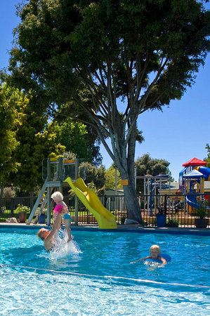 Motueka TOP 10 Holiday Park: Relax in our heated swimming pool