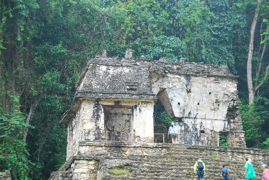 Hotel Mision Palenque: Palenque 4