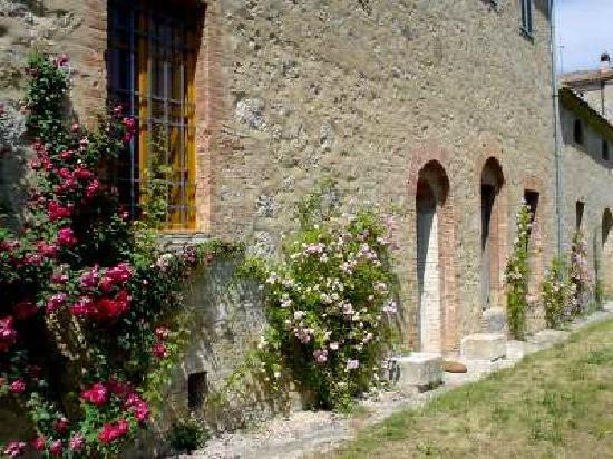 Castello di Grotti - Residenza d'epoca: Il parco