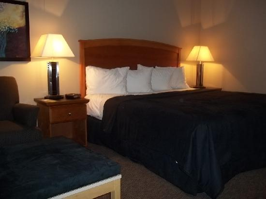 Quality Inn West Edmonton: King size bed with firm pillows