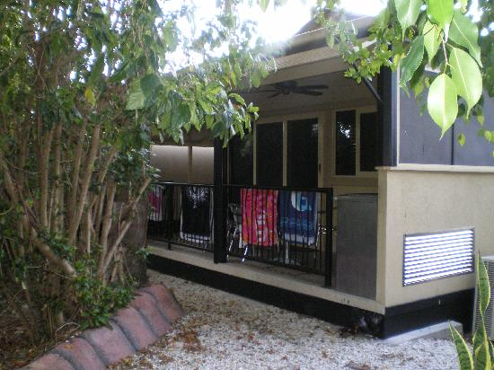 Ashmore Palms Holiday Village: Gorgeous outlook from rainforest retreats