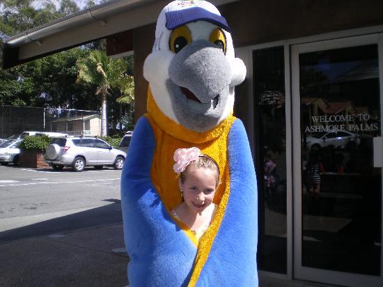 Ashmore Palms Holiday Village: Macca Macaw