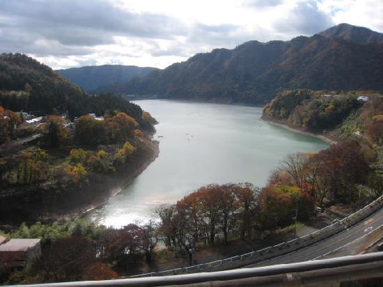 Sarugakyo Hotel: 赤谷湖の眺望です。