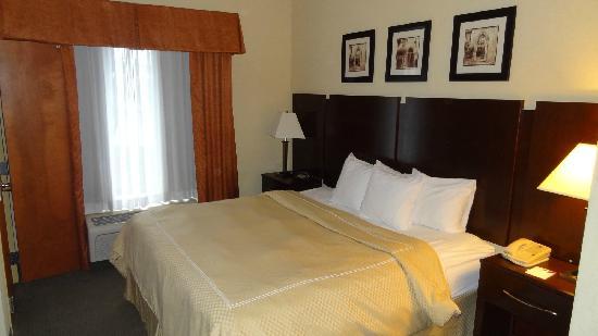 Comfort Suites Murfreesboro: bed