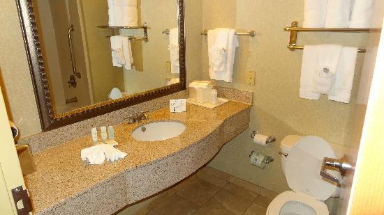 Comfort Suites Murfreesboro: bathroom